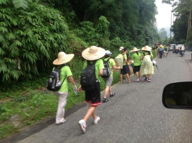 Green Walk 10
